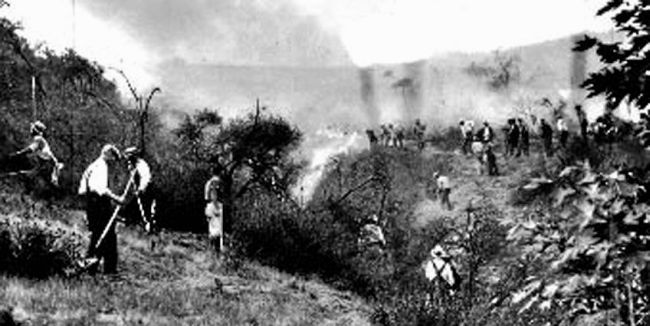 1933 Griffith Park Fire (Courtesy of USC Regional History Center)