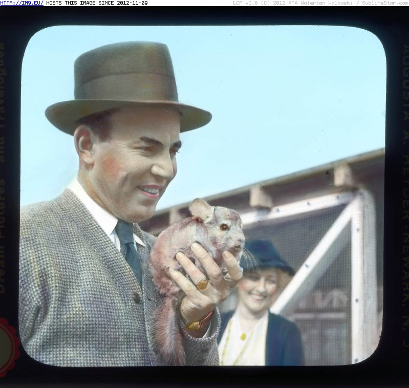 Mathias F. Chapman holding a chinchilla at Chapman Chinchilla Farm, Inglewood (1932-1934)