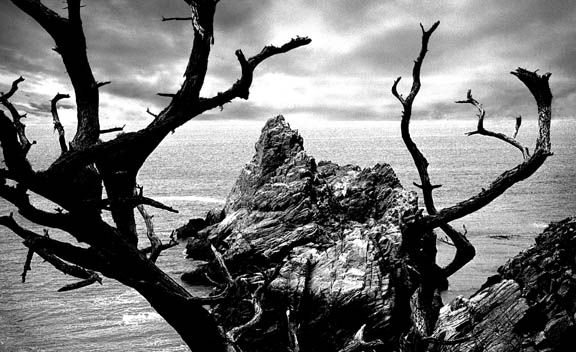 Pinnacle Cove, Point Lobos, California. Photography by Ansel Adams.