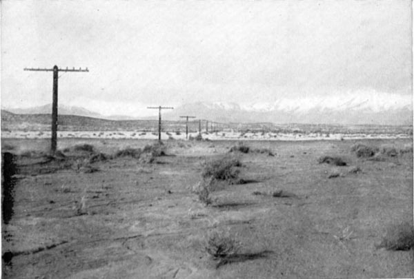 Telephone wires crossing the Nevada desert.