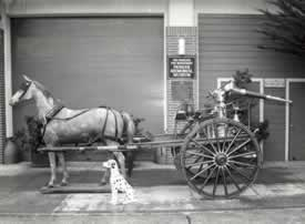 San Francisco fire department horse drawn battery (1909).