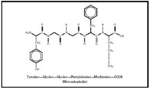 Endorphin chemical structure.