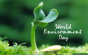 U.N. World Environment Day.