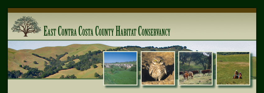 East Contra Costa County Habitat Conservation Plan.